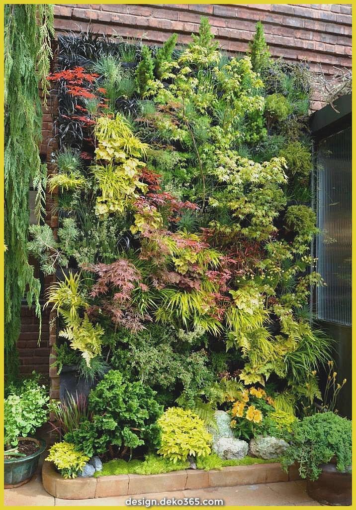 Ideen für jedes vertikale Gärten, die die Spezies und ...